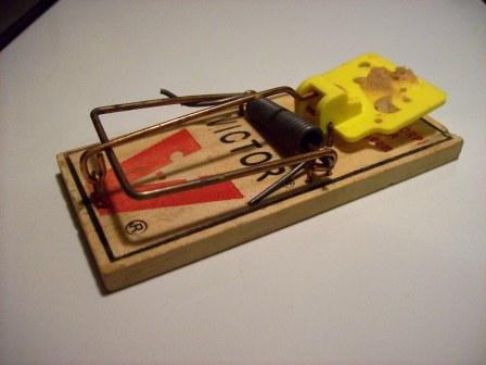 Mouse Trap = Victory!