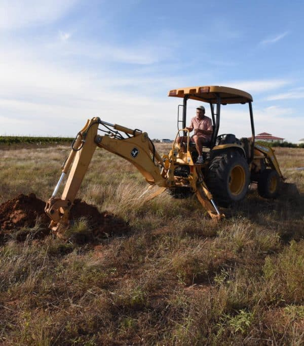 Preparing for Vineyard Expansion