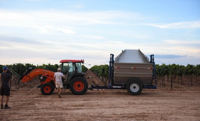 Oswald Vineyard Roussanne Harvest - Tractor and Dump Buggy
