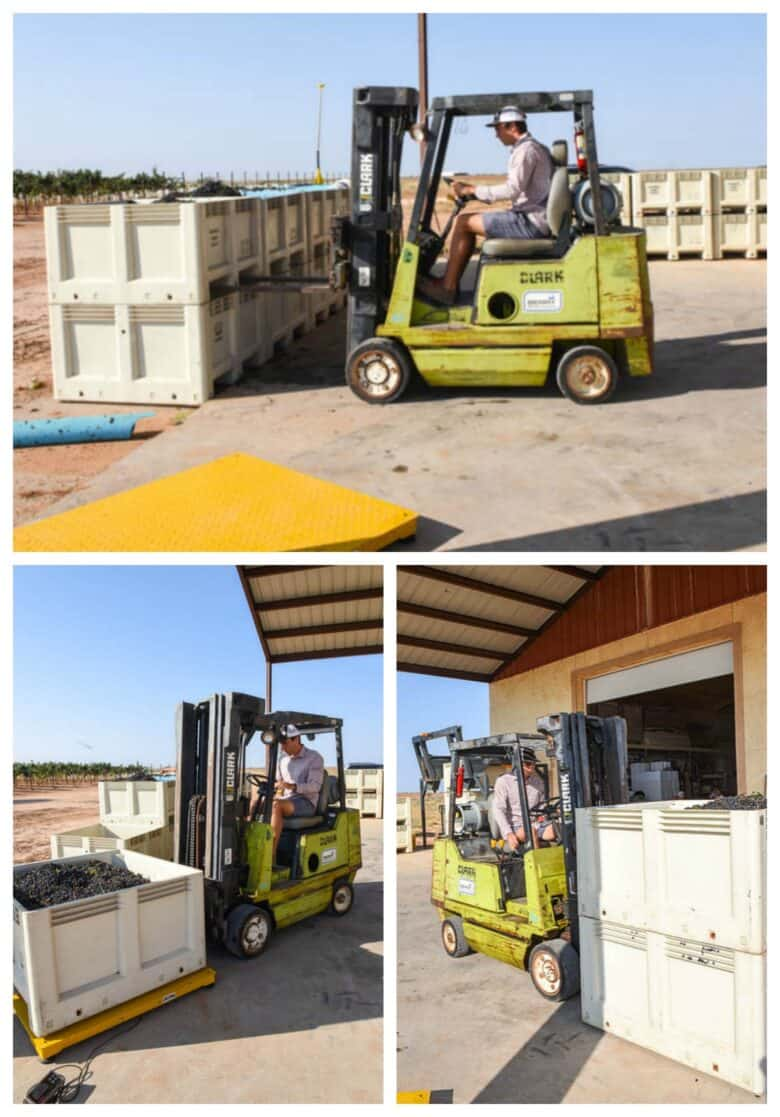 Aglianico Harvest 2020 - Collage of pictures; stacking, weighing and moving bins