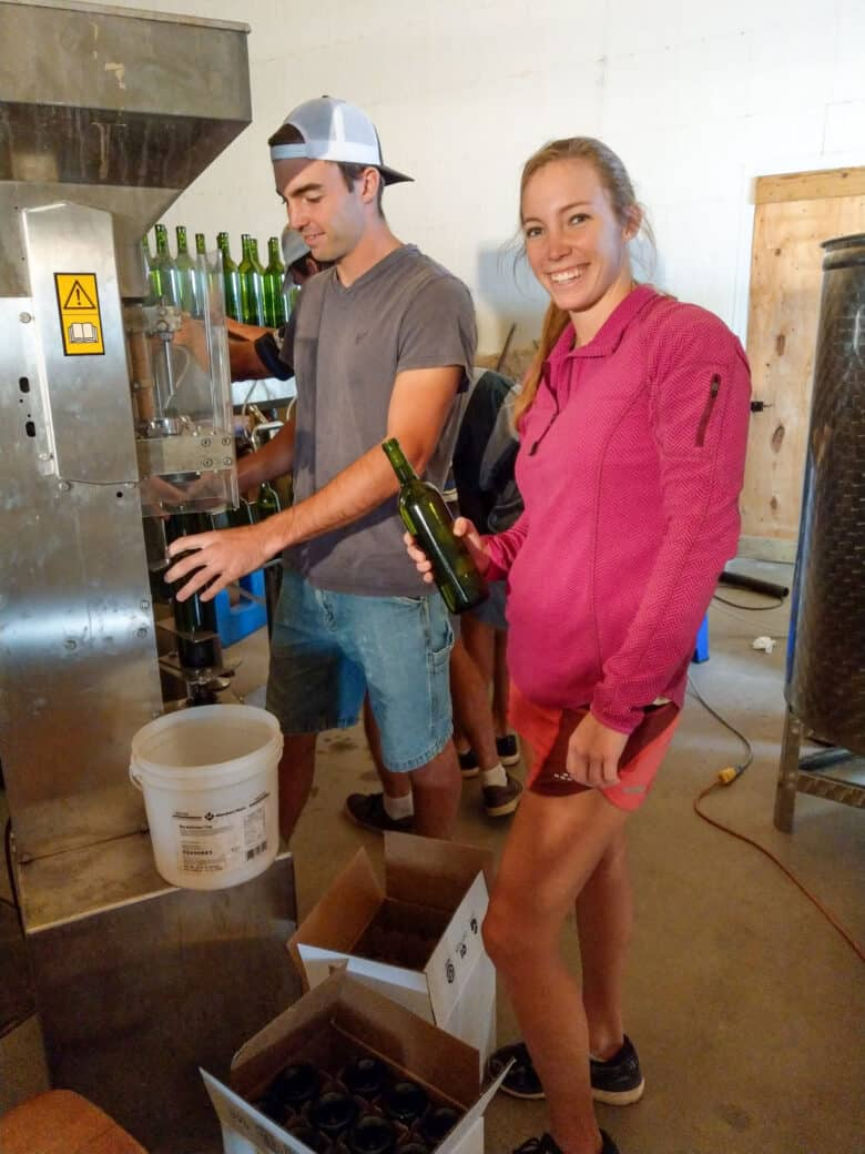 Bottling 2017 Vintage - happy workers at the corking station.
