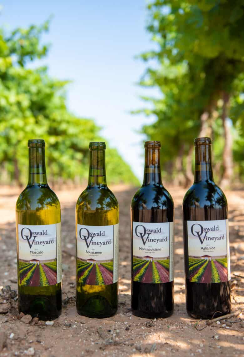 Moscato, Roussanne, Montepulciano and Aglianico wine bottles in the vineyard.